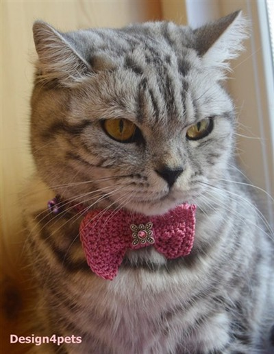 crochet cat collar with bow